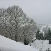 pierwszy śnieg..