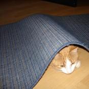 albo pod dywanikiem...